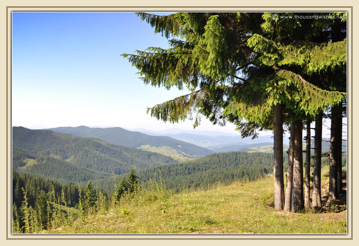 19_bucovina_romania_mountains