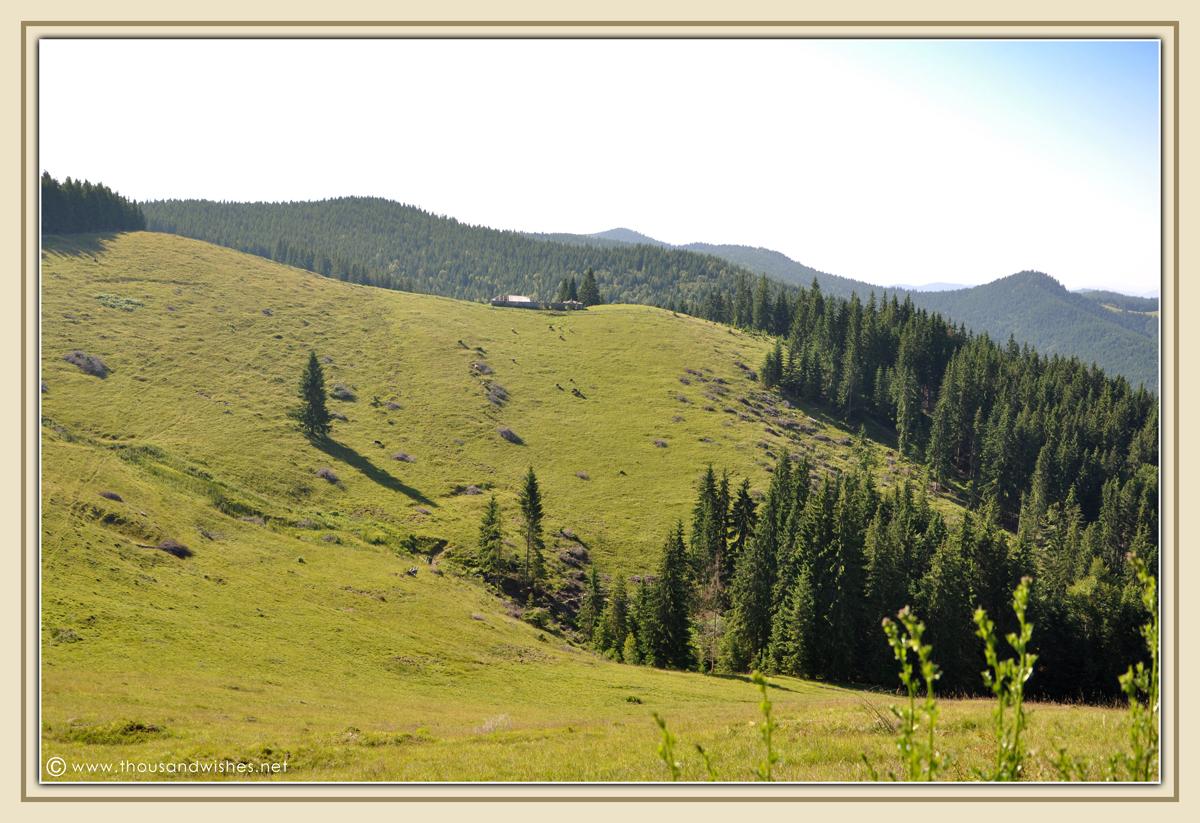 20_bucovina_romania_mountains