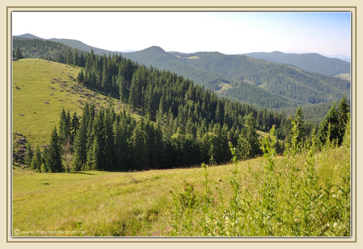 21_bucovina_romania_mountains