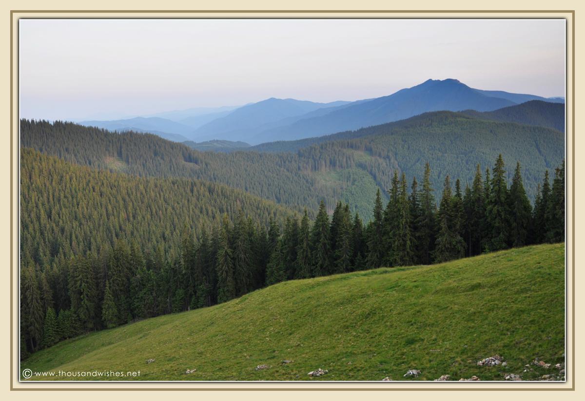 28_bucovina_romania_mountains