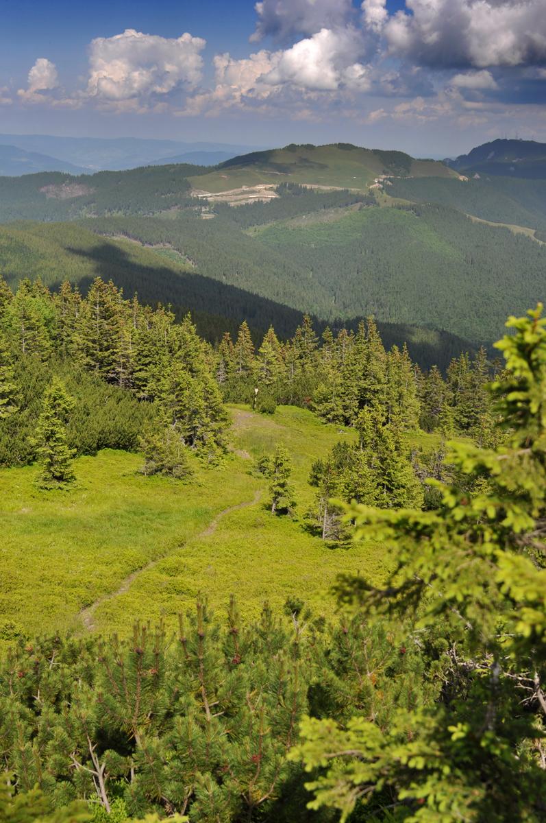 33_giumalau_mountains_bucovina_romania