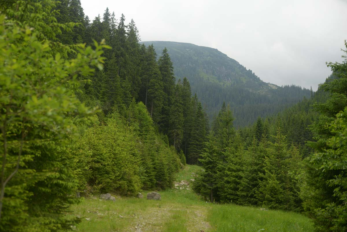 77_parang_mountains_carpathians_romaniaat