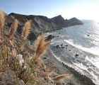 Highway One, California | 164 Views | Fame 12.62