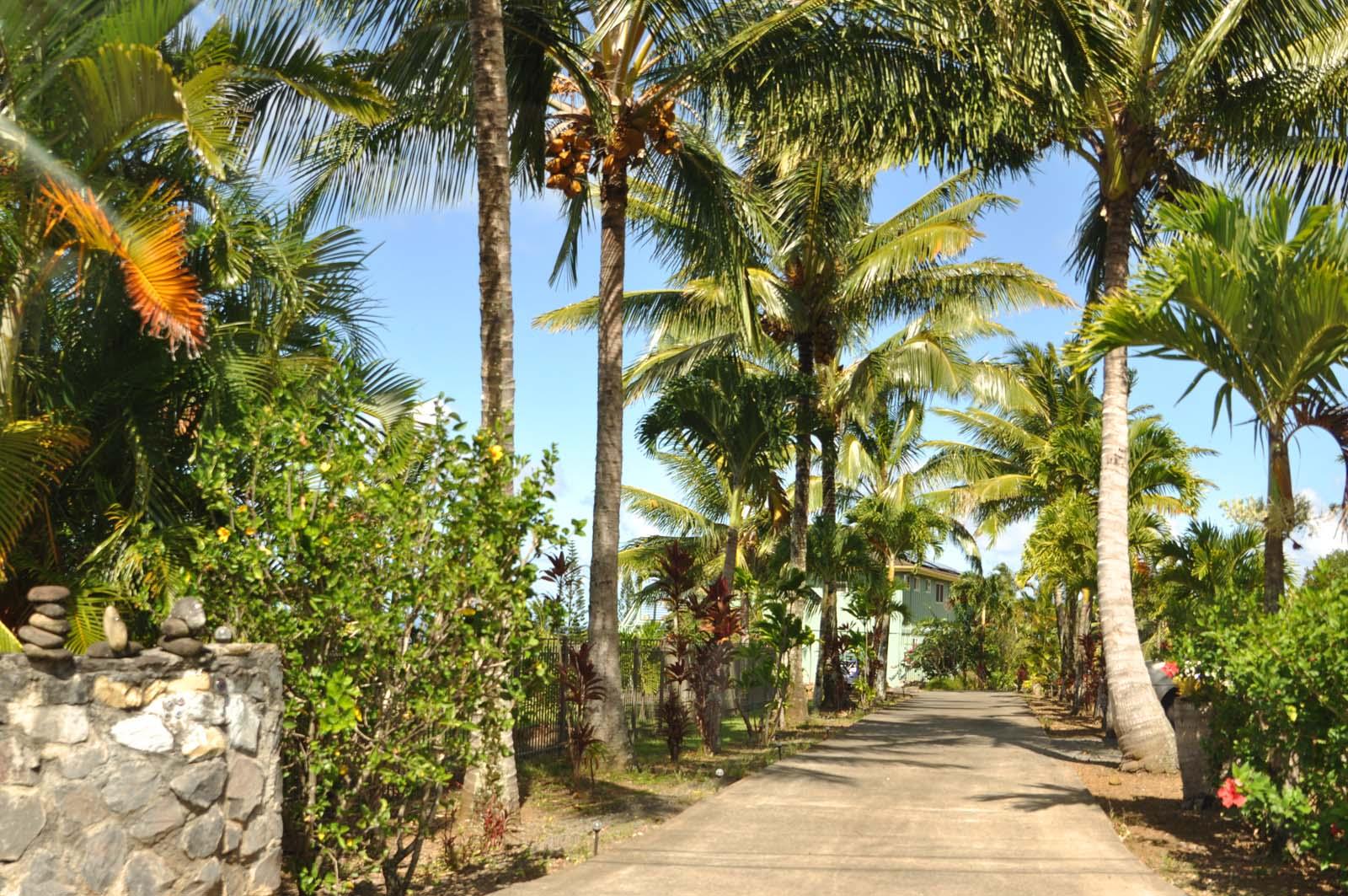 011_maui_hawaii_island