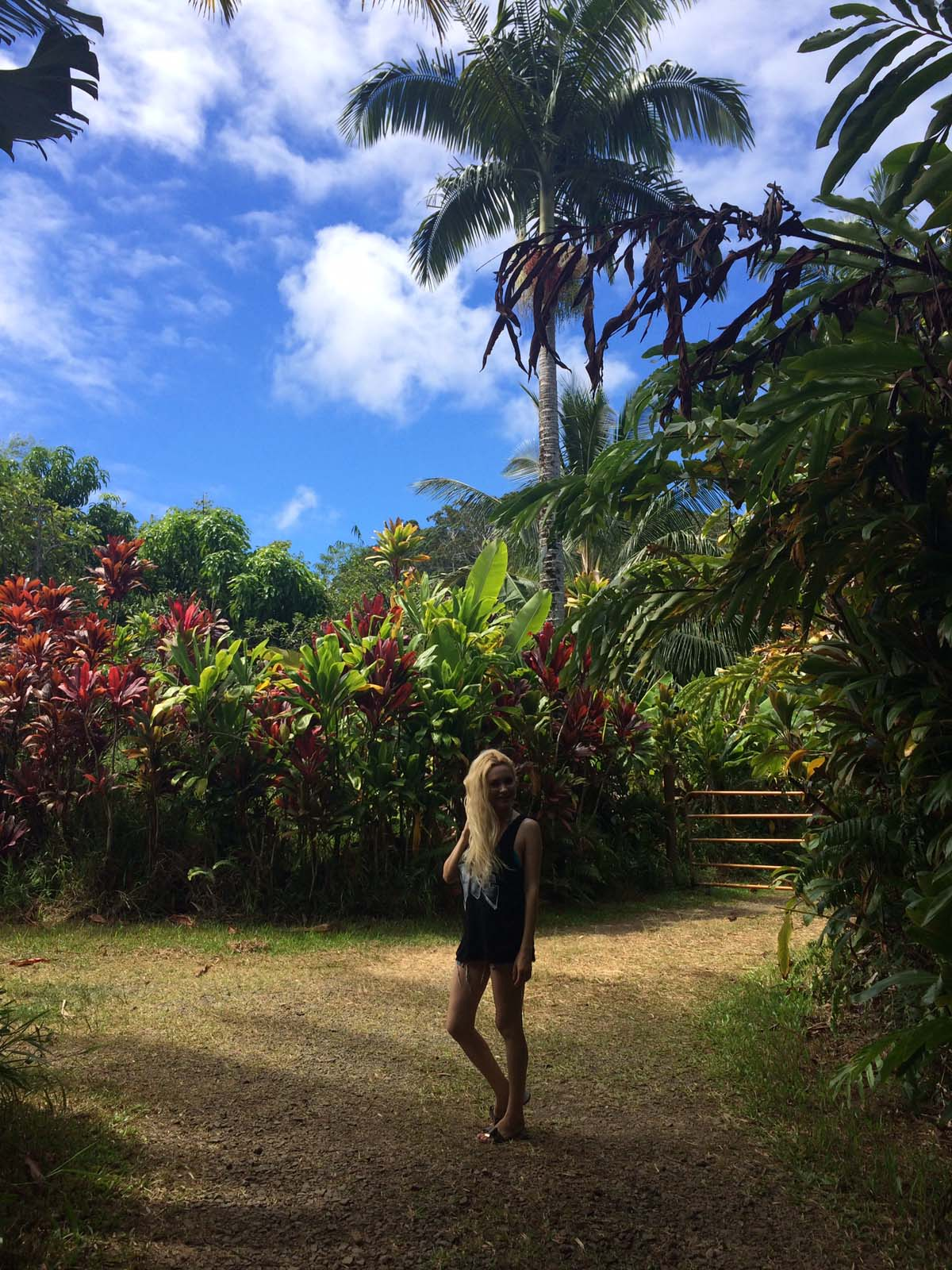 024_maui_hawaii_island
