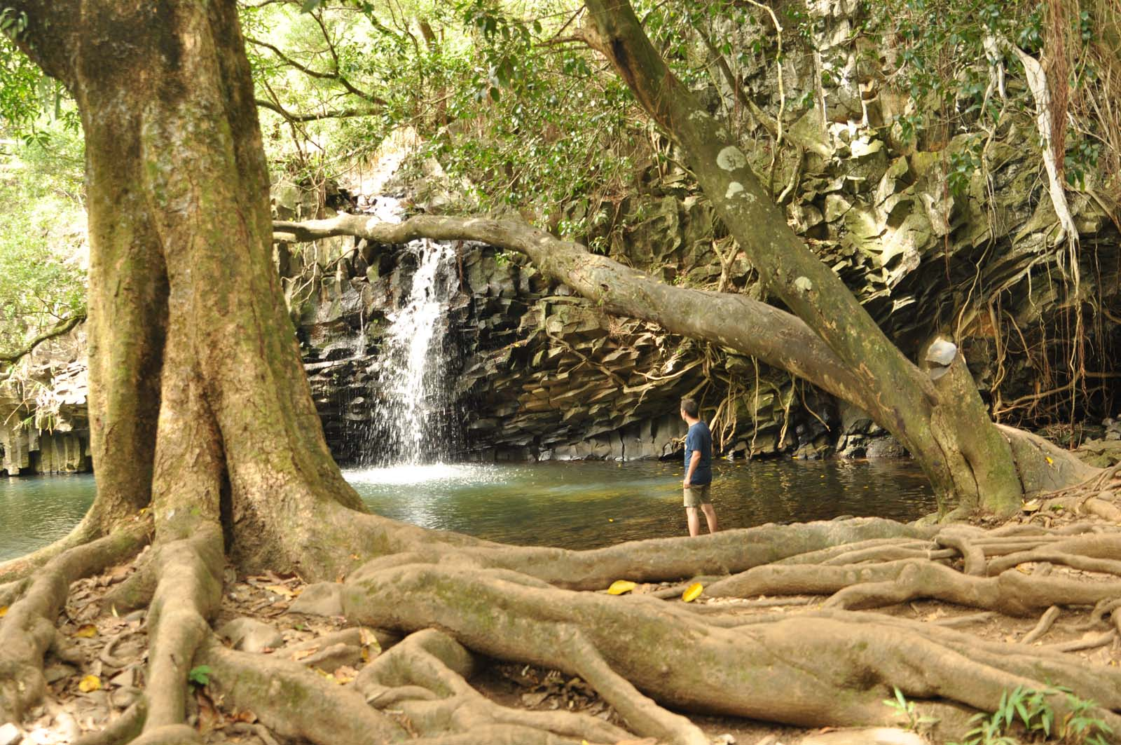 029_maui_hawaii_island