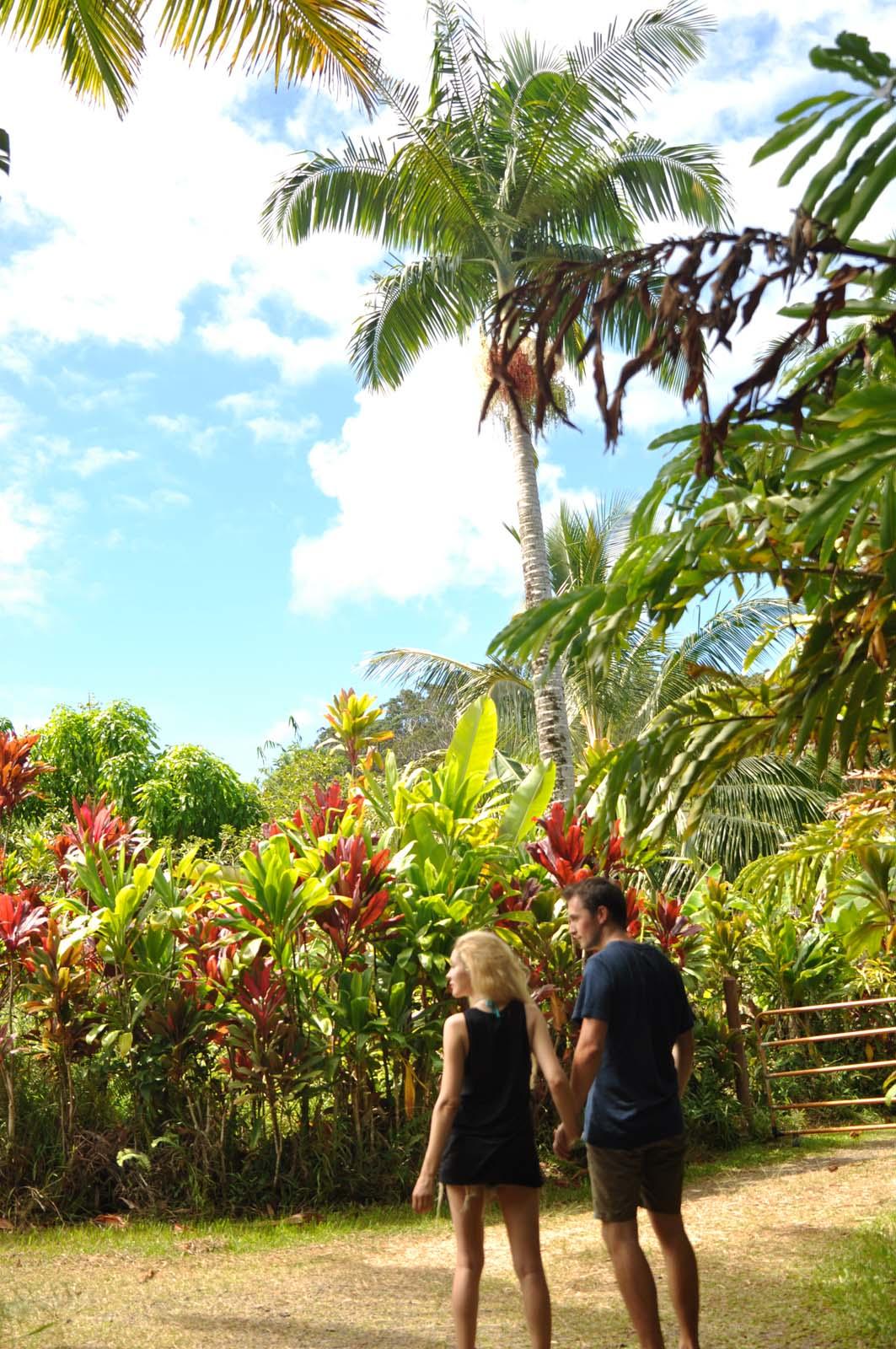 035_maui_hawaii_island