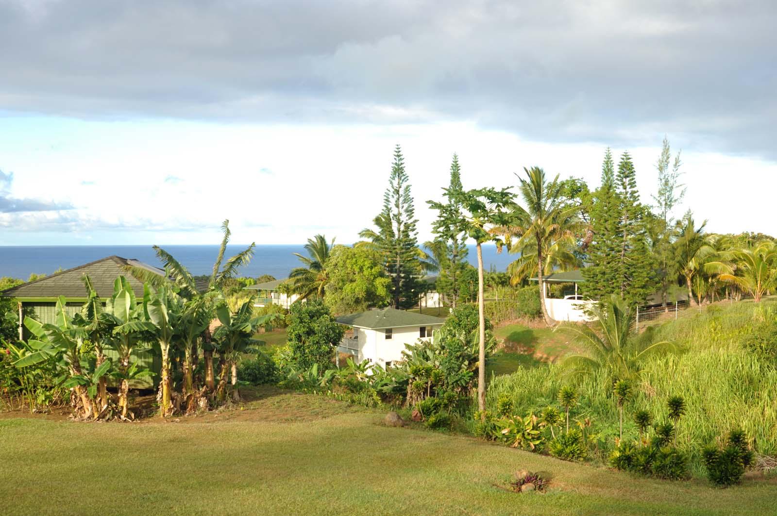 048_maui_hawaii_island