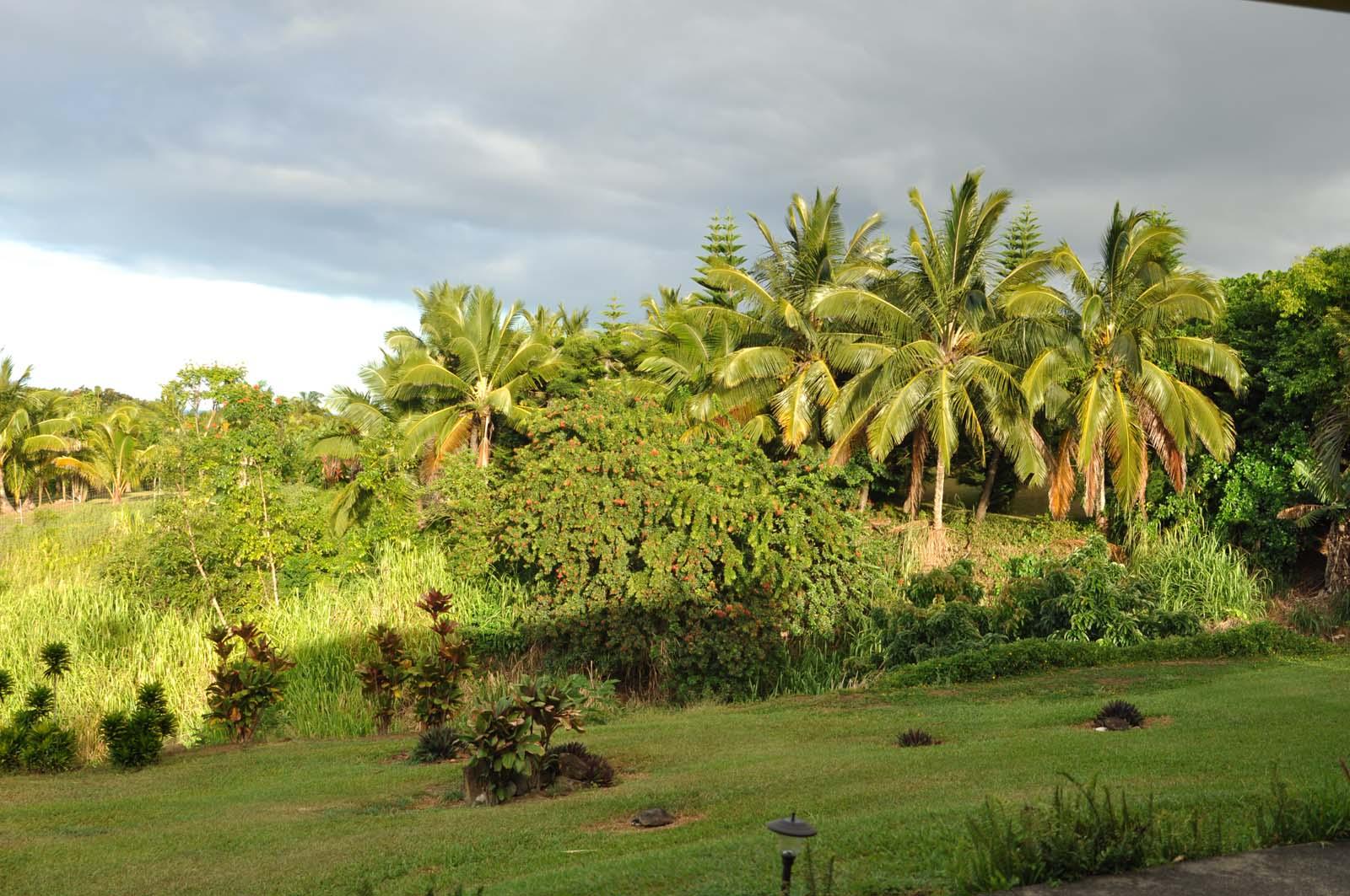 049_maui_hawaii_island