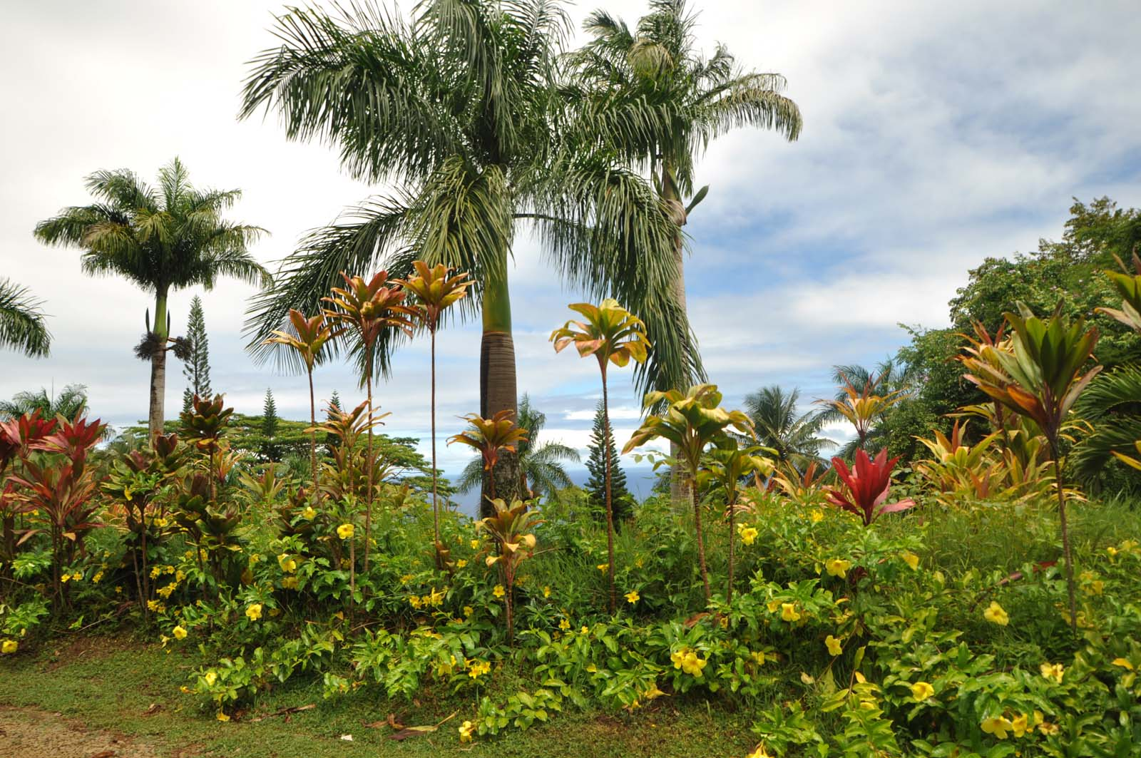 081_maui_hawaii_island