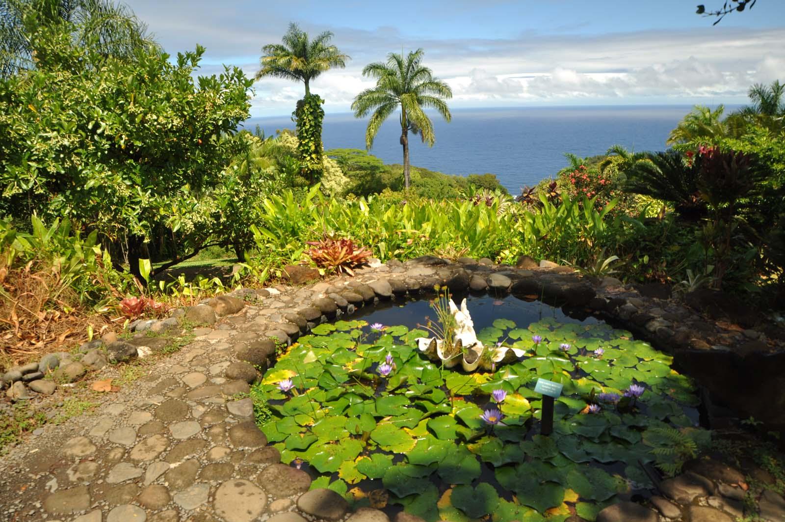 082_maui_hawaii_island