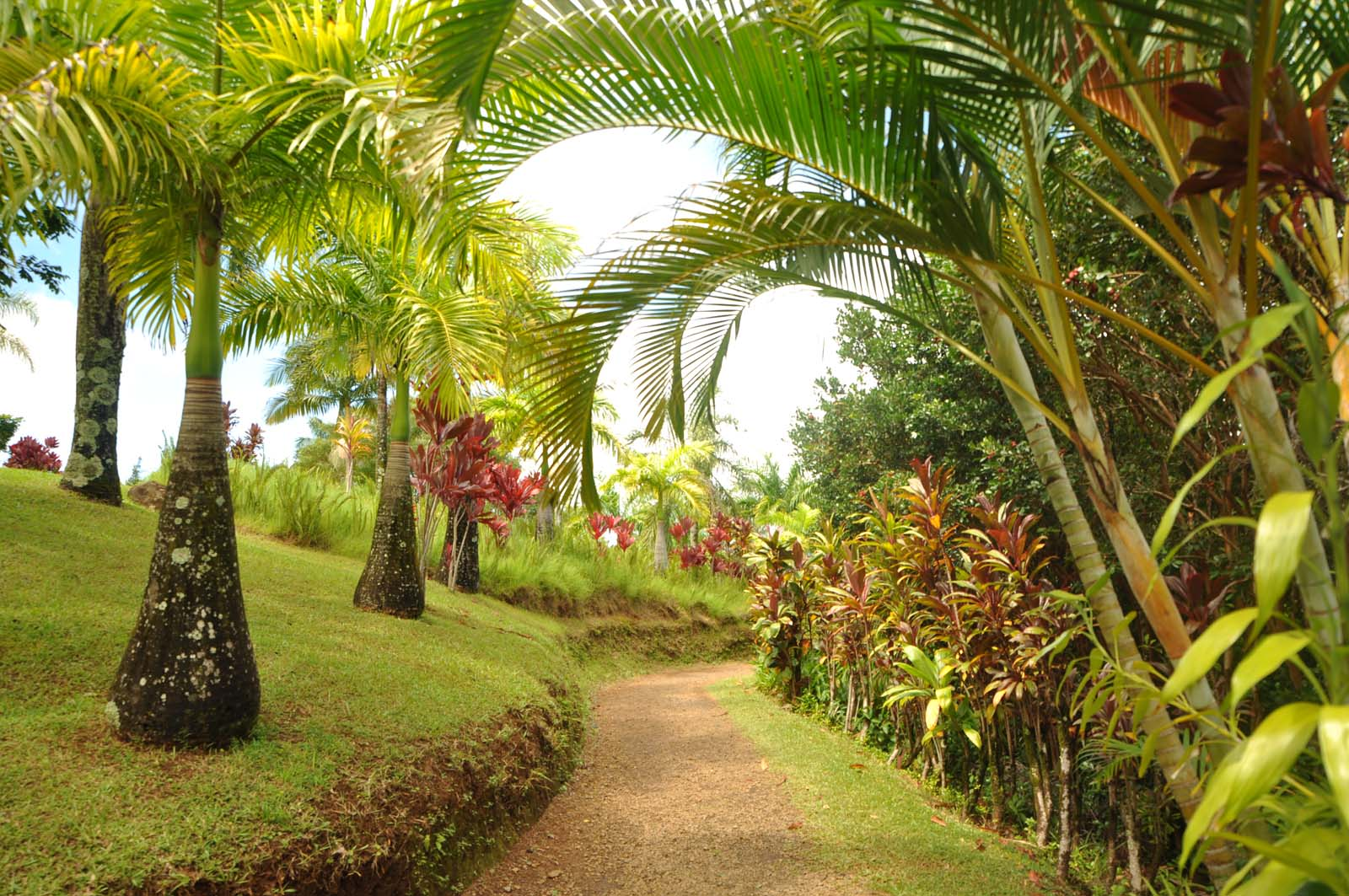 101_maui_hawaii_island