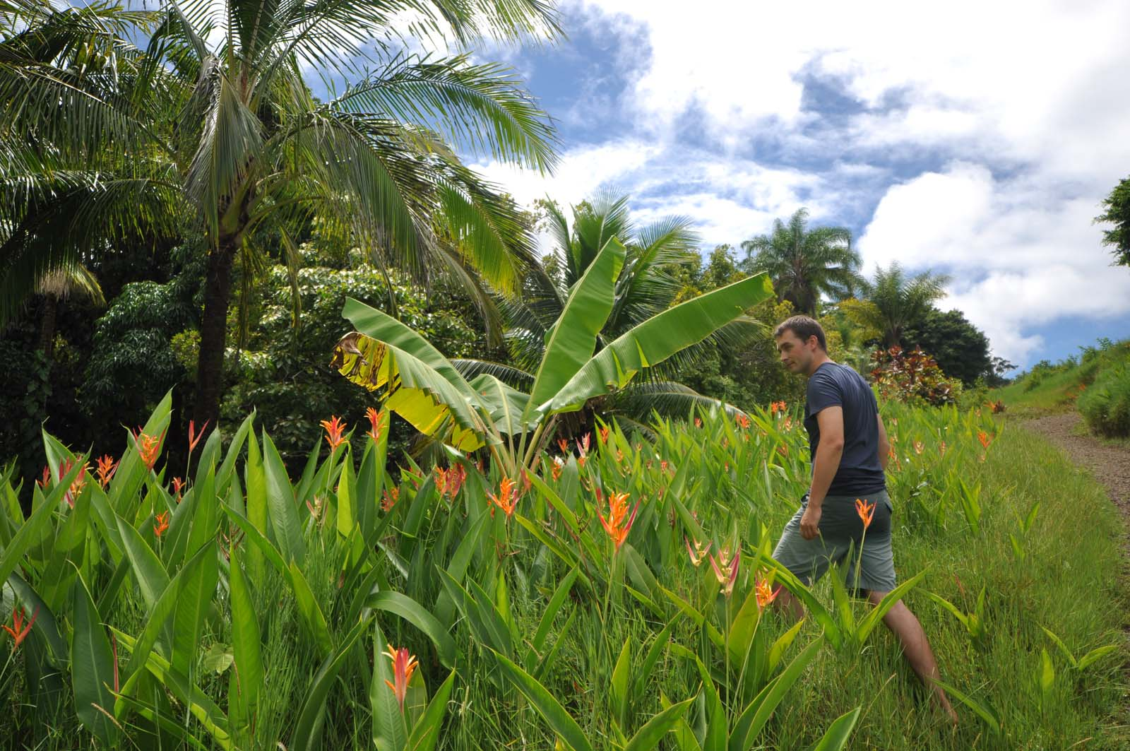 105_maui_hawaii_island