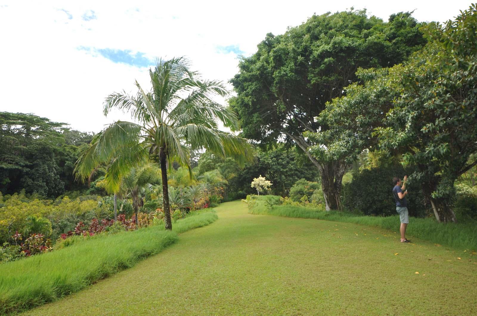 106_maui_hawaii_island
