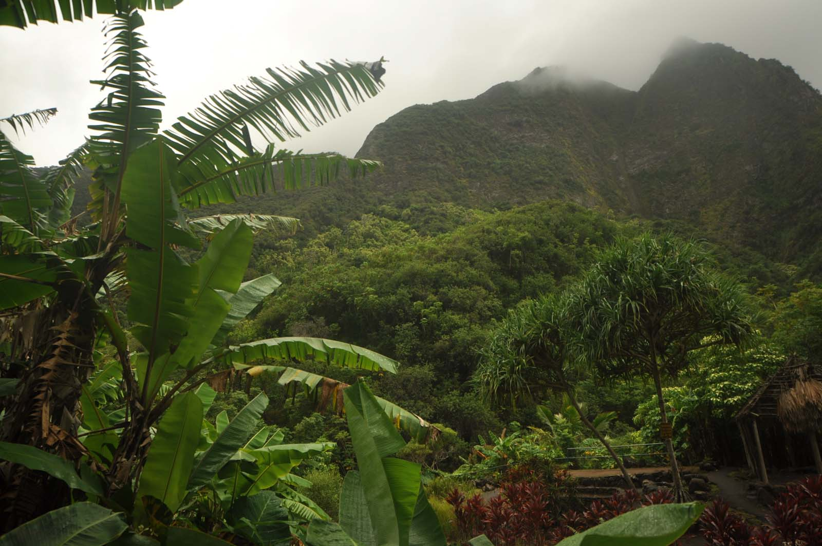 003_iao_valley_maui_hawaii