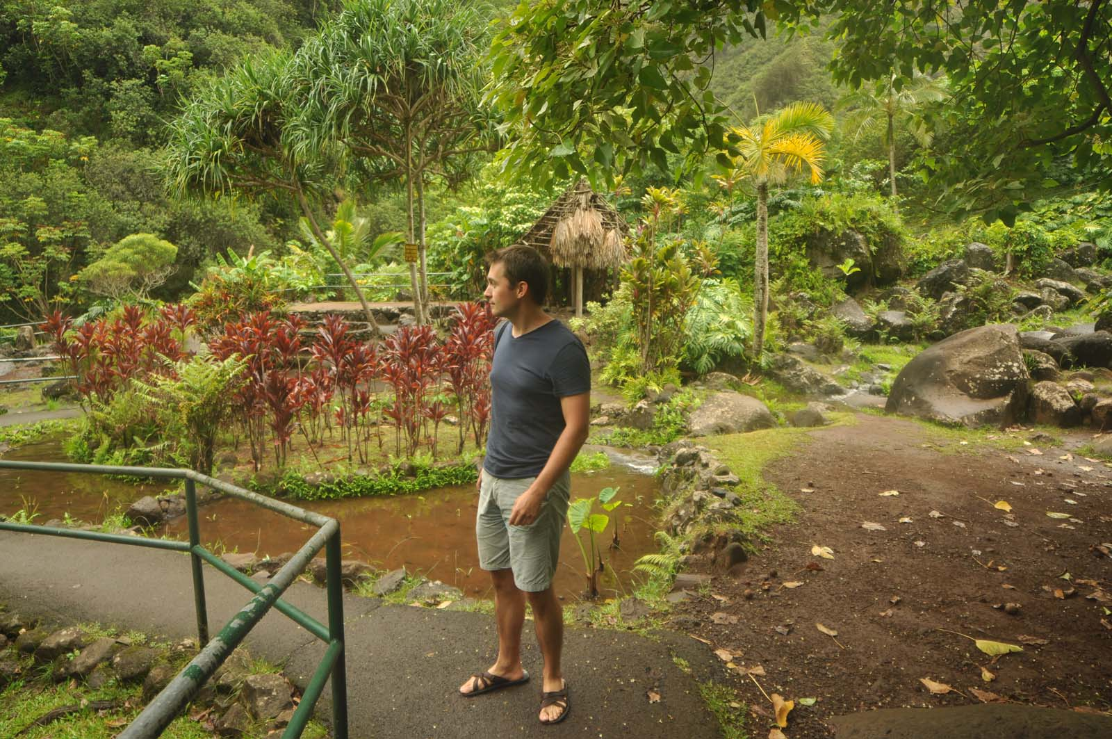 004_iao_valley_maui_hawaii
