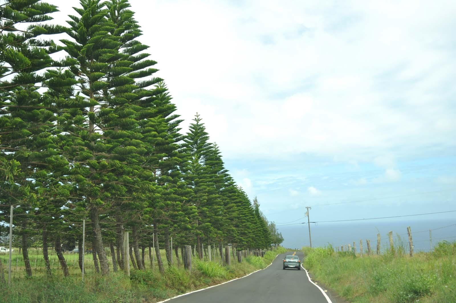 016_west_coast_maui_hawaii