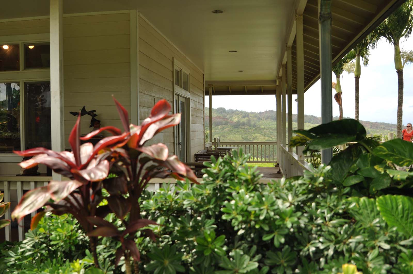 019_west_coast_maui_hawaii