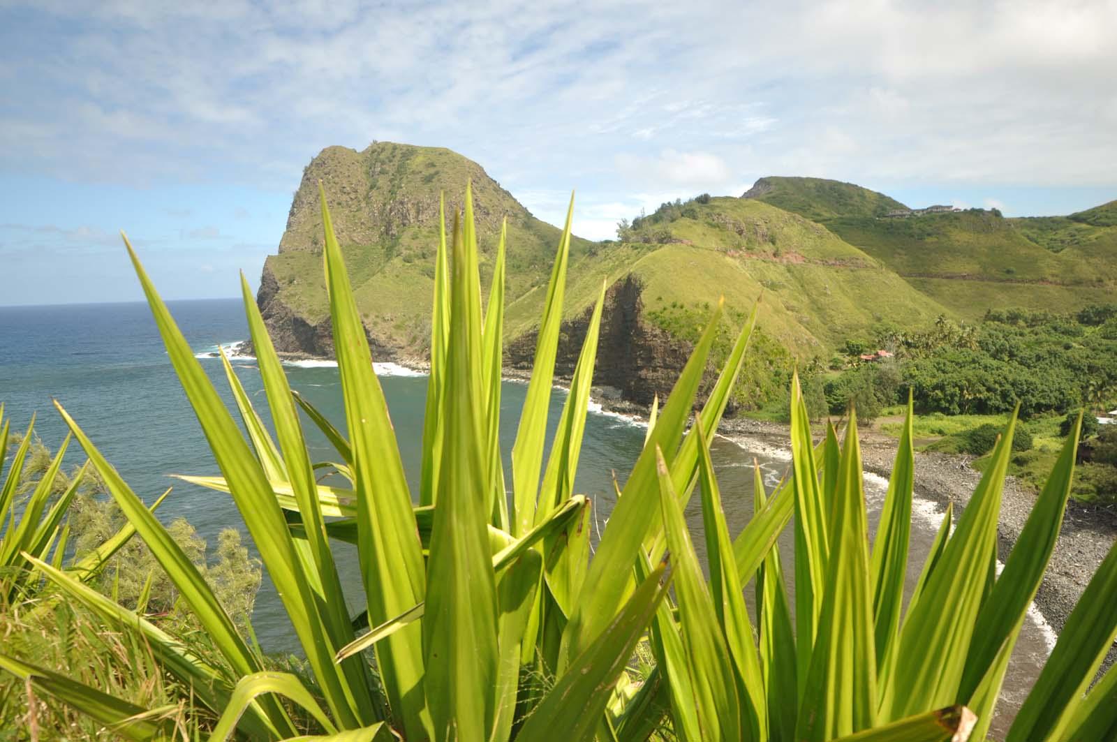 028_west_coast_maui_hawaii