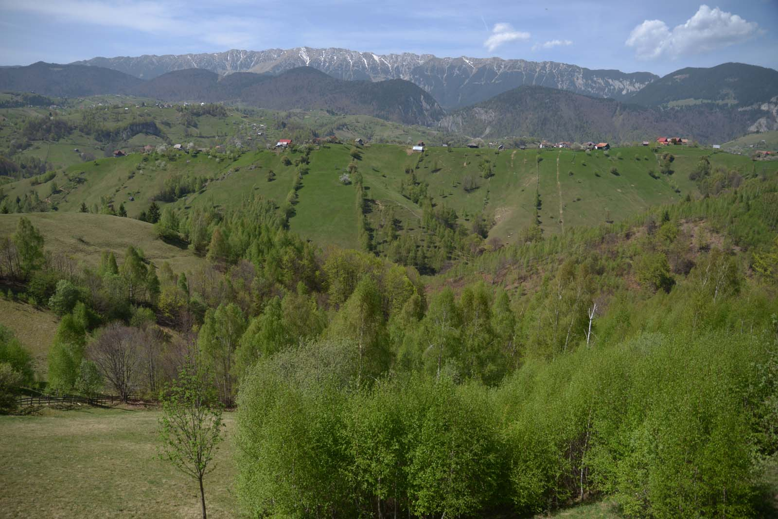 12_magura_piatra_craiului_travel_romania