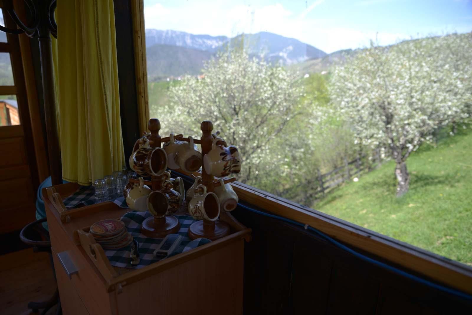 13_magura_piatra_craiului_travel_romania