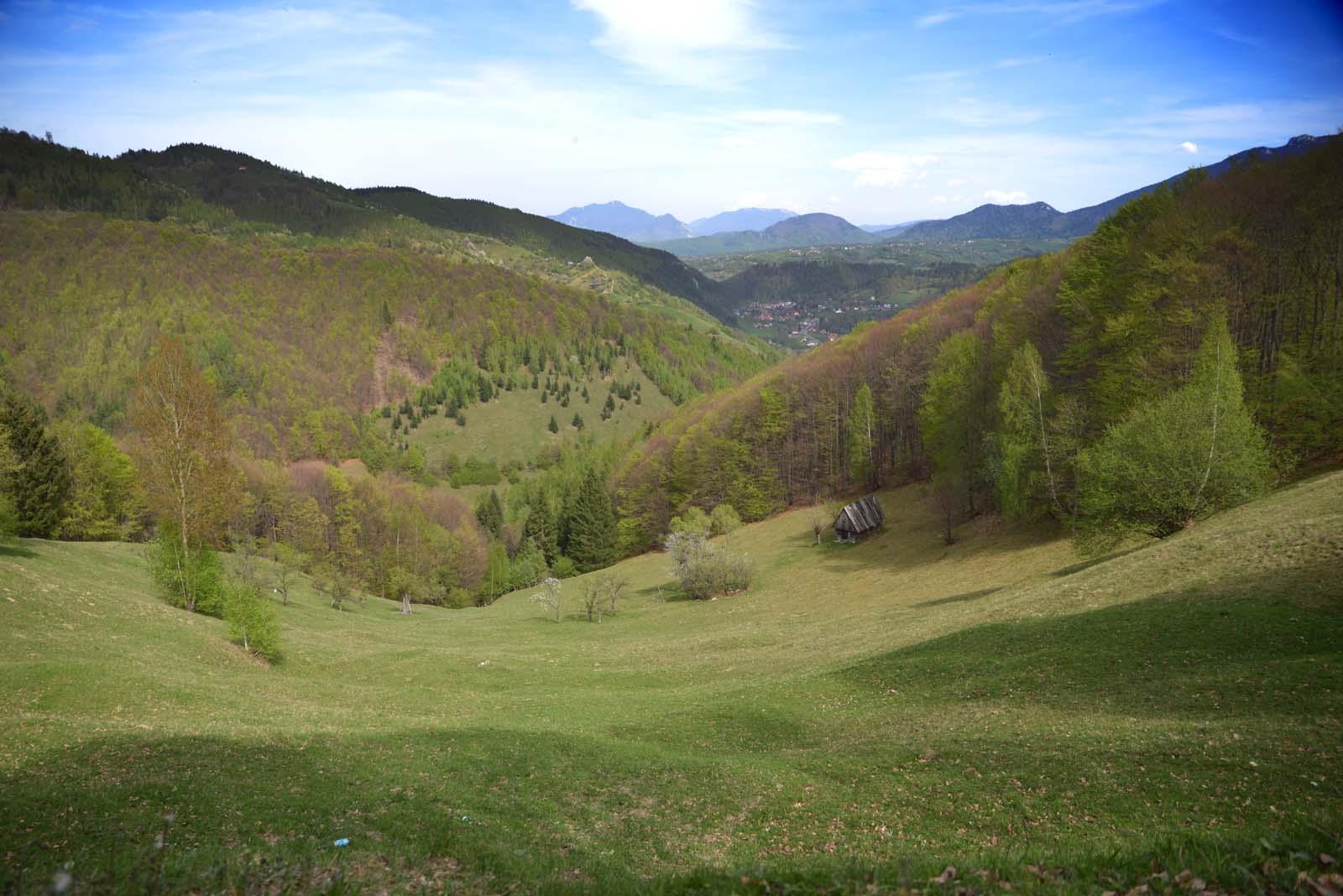 15_magura_piatra_craiului_travel_romania