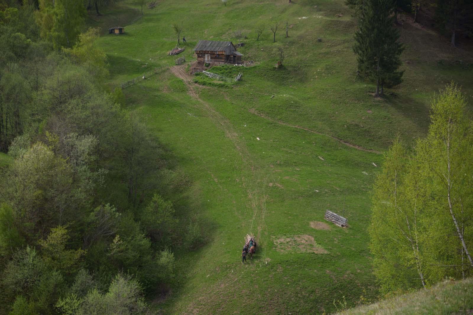 16_magura_piatra_craiului_travel_romania