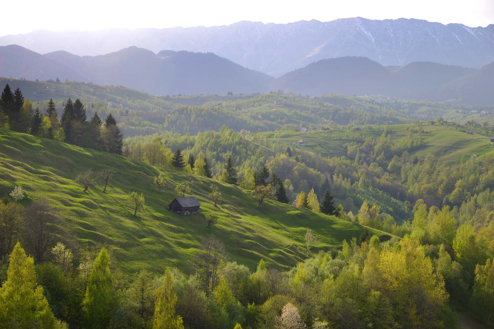21_magura_piatra_craiului_travel_romania