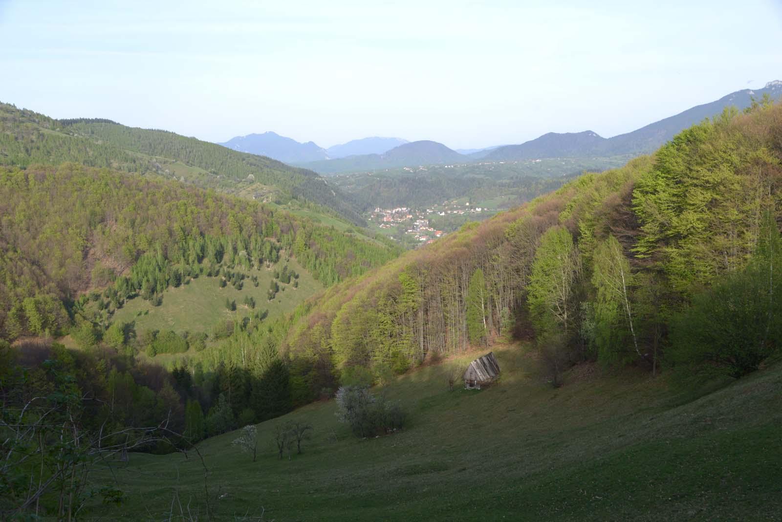 24_magura_piatra_craiului_travel_romania