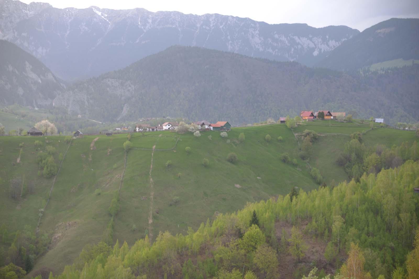 26_magura_piatra_craiului_travel_romania