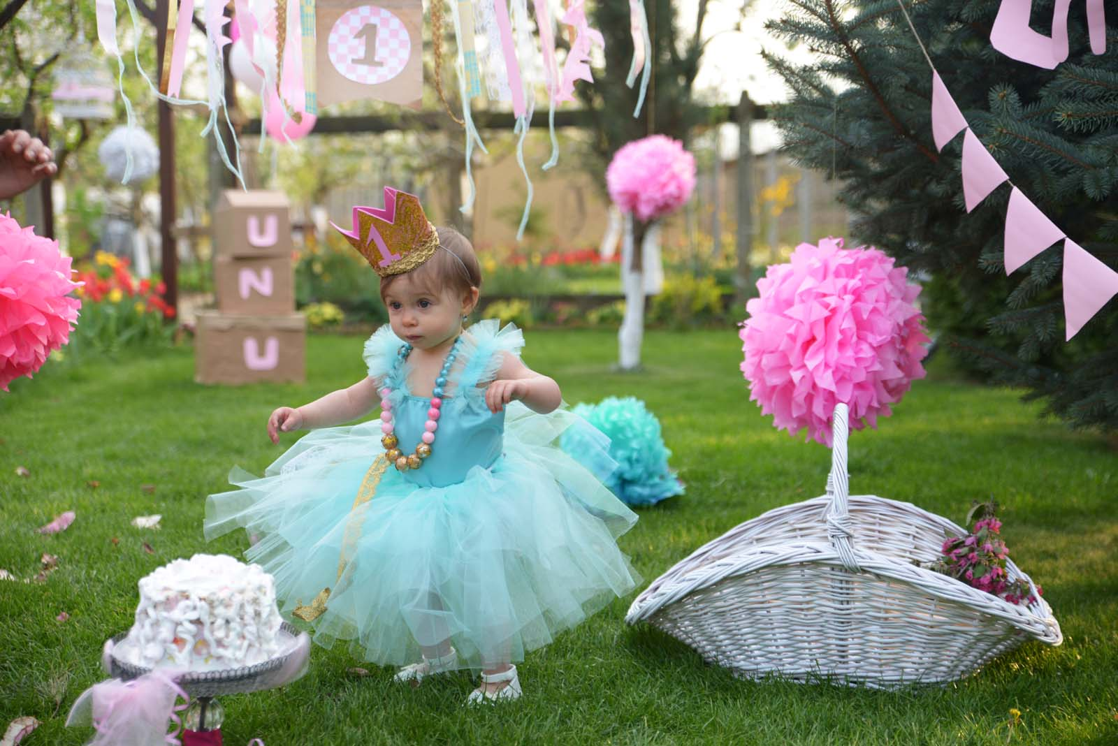 69_baby_girl_first_anniversary_tutu_pompon