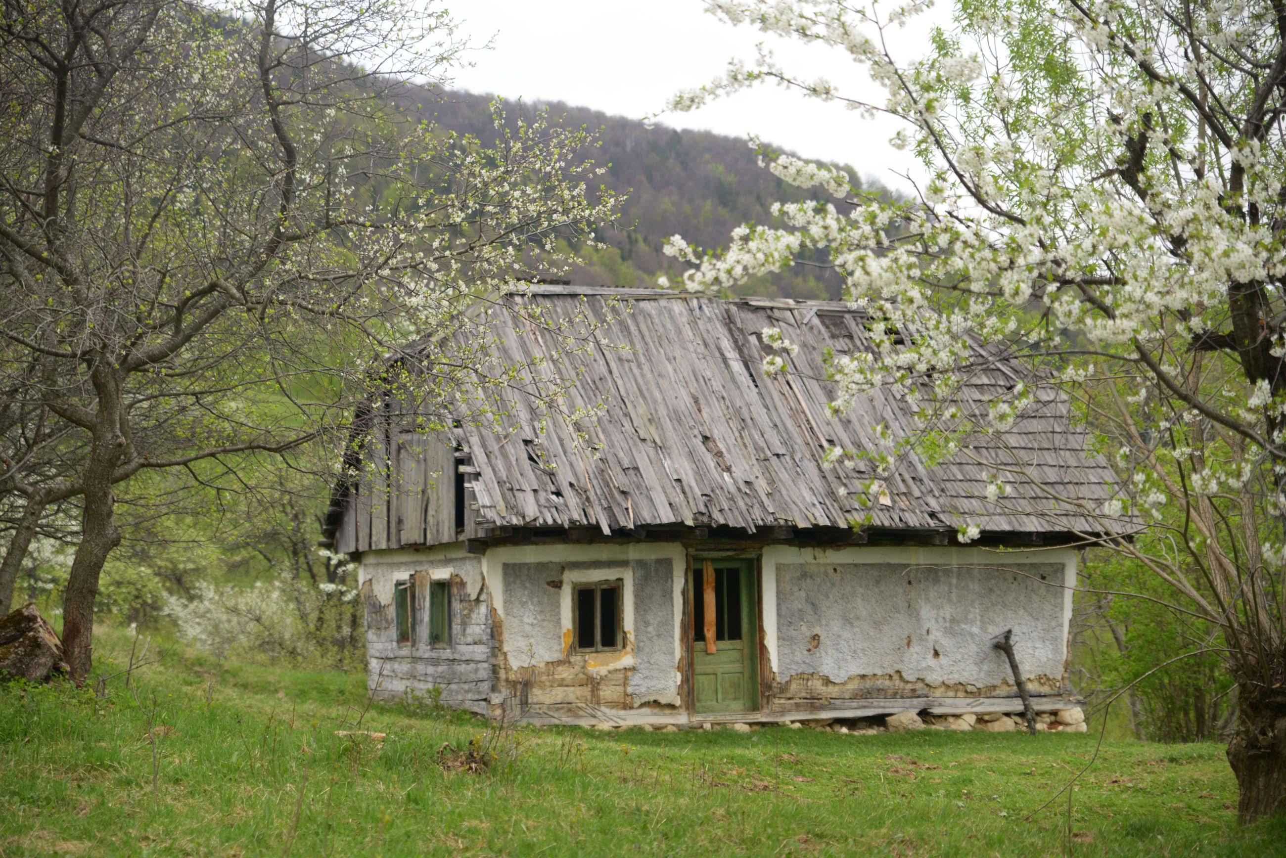 04_hiking_magura_piatra_craiului_carpathians