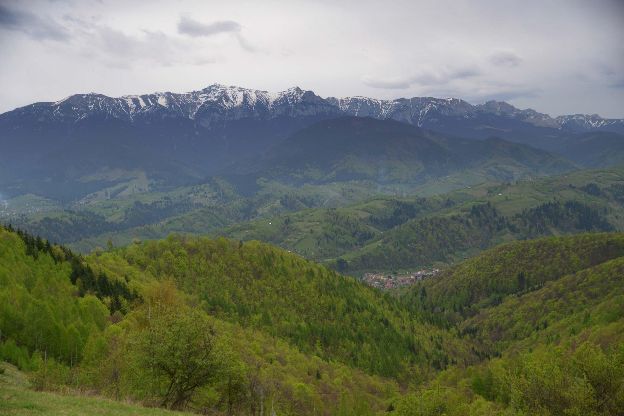 08_hiking_magura_piatra_craiului_carpathians