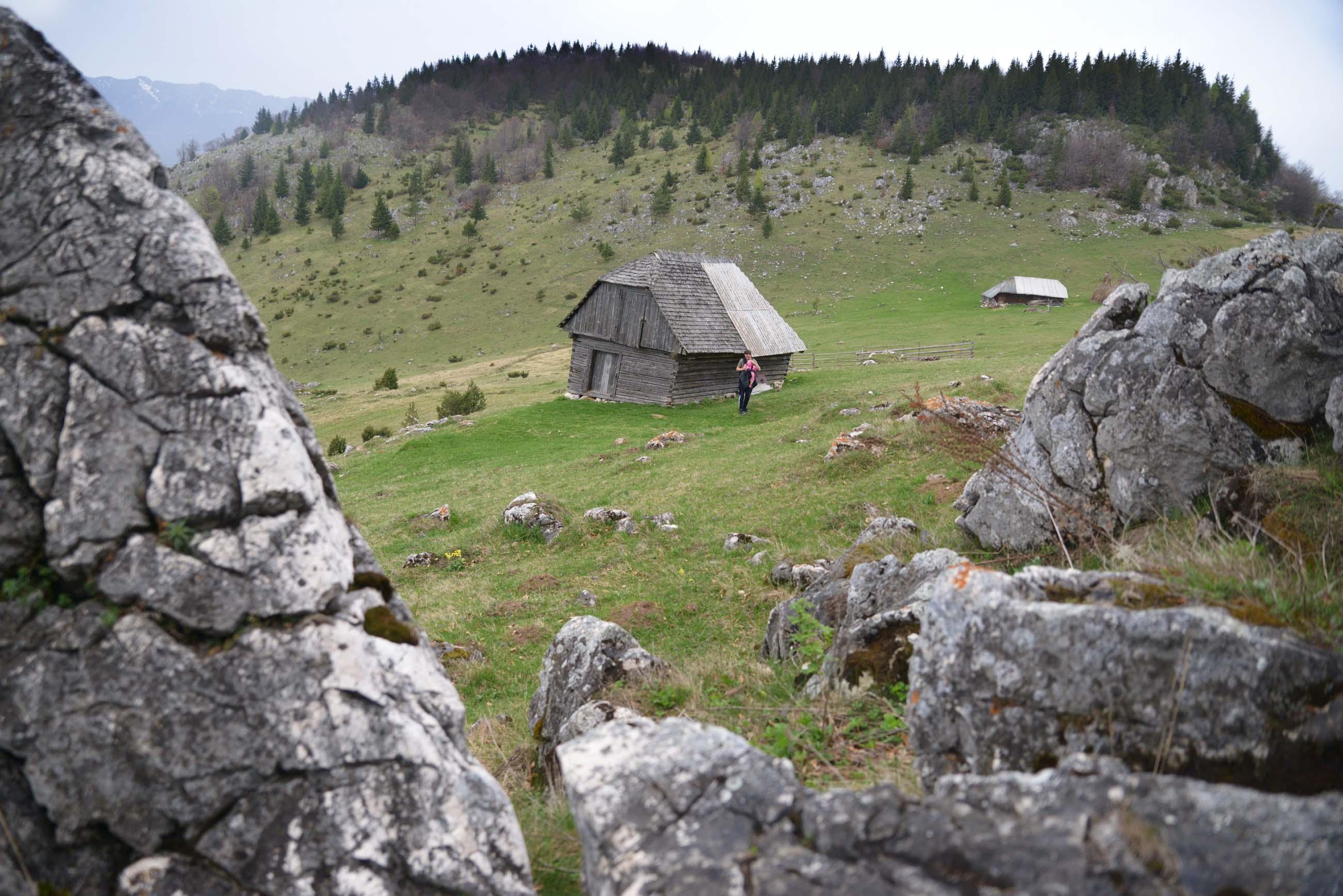15_hiking_magura_piatra_craiului_carpathians