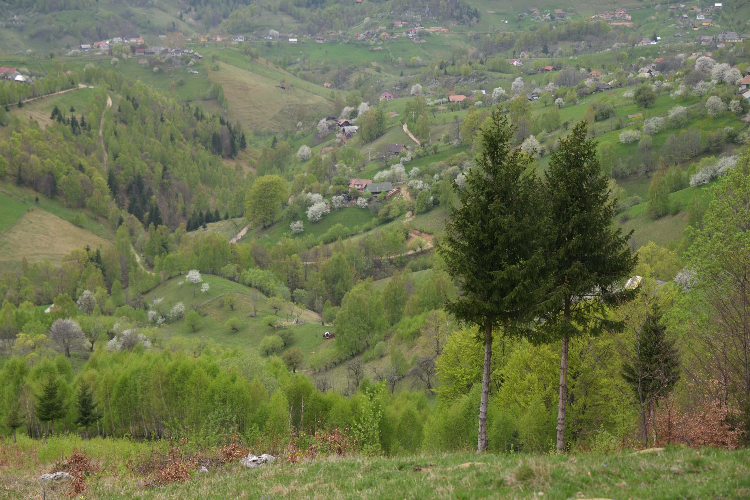 26_hiking_magura_piatra_craiului_carpathians