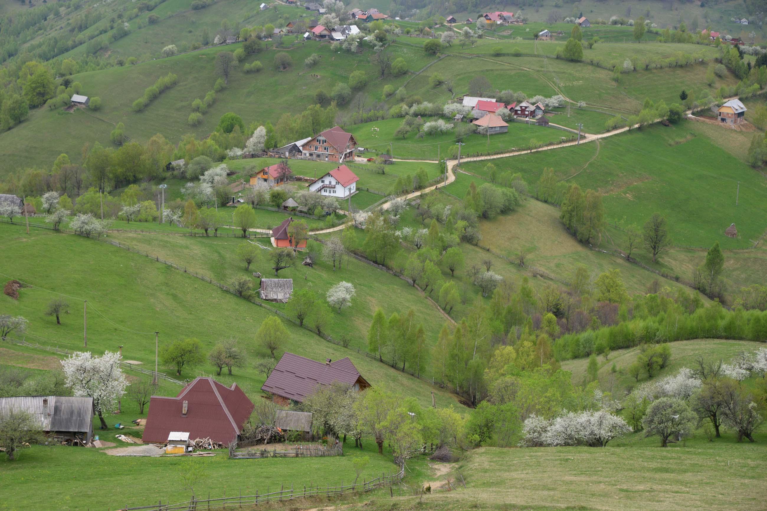 28_hiking_magura_piatra_craiului_carpathians