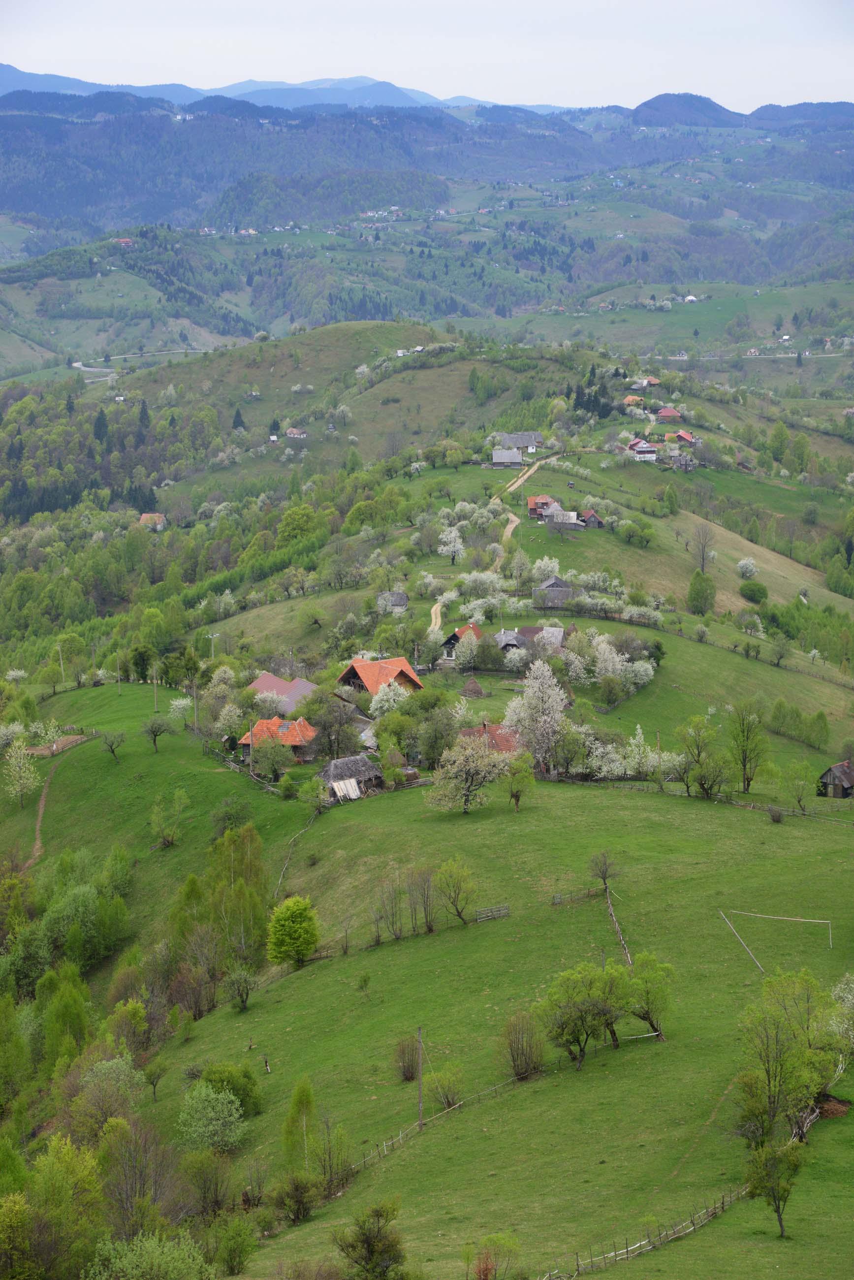 30_hiking_magura_piatra_craiului_carpathians