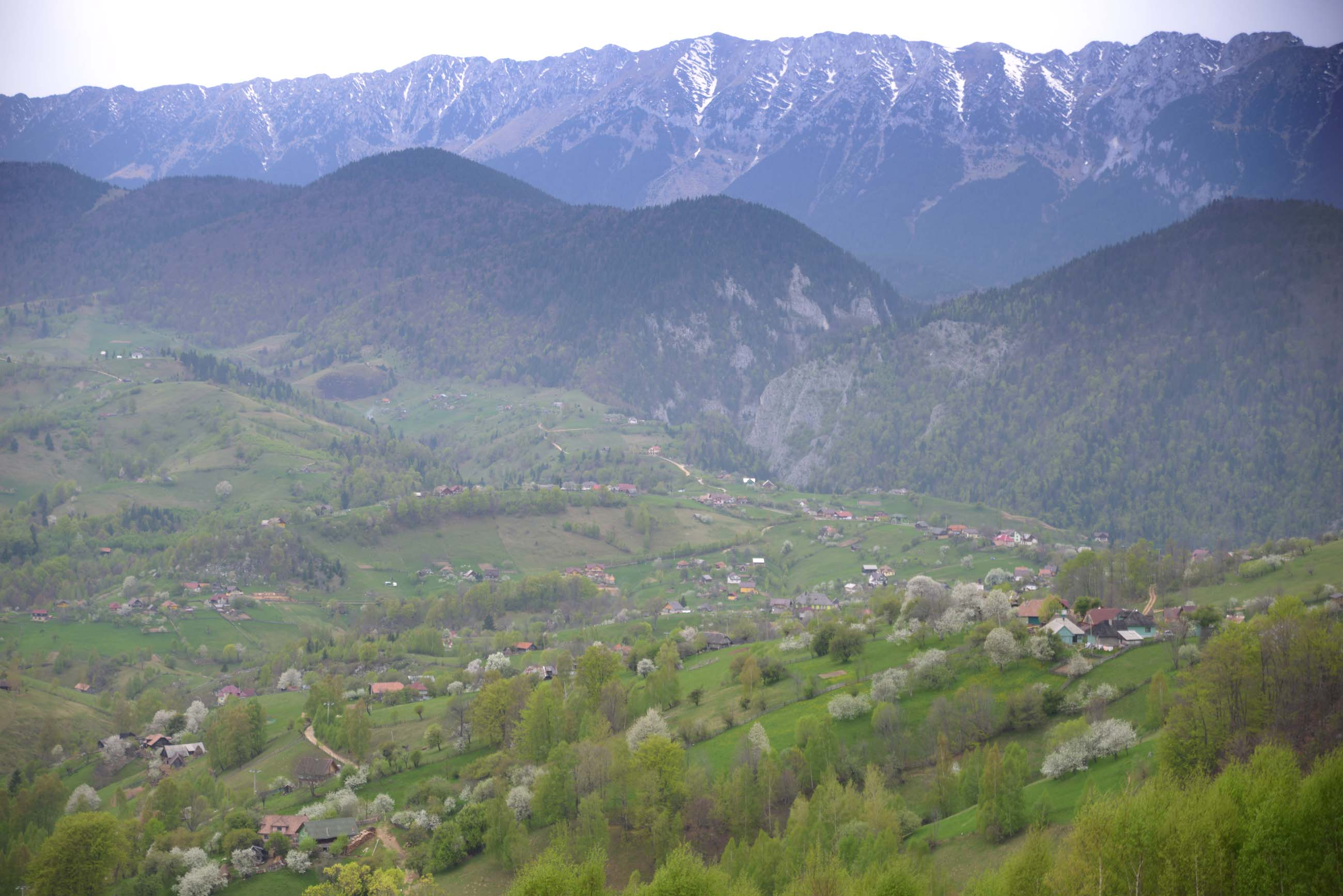 31_hiking_magura_piatra_craiului_carpathians