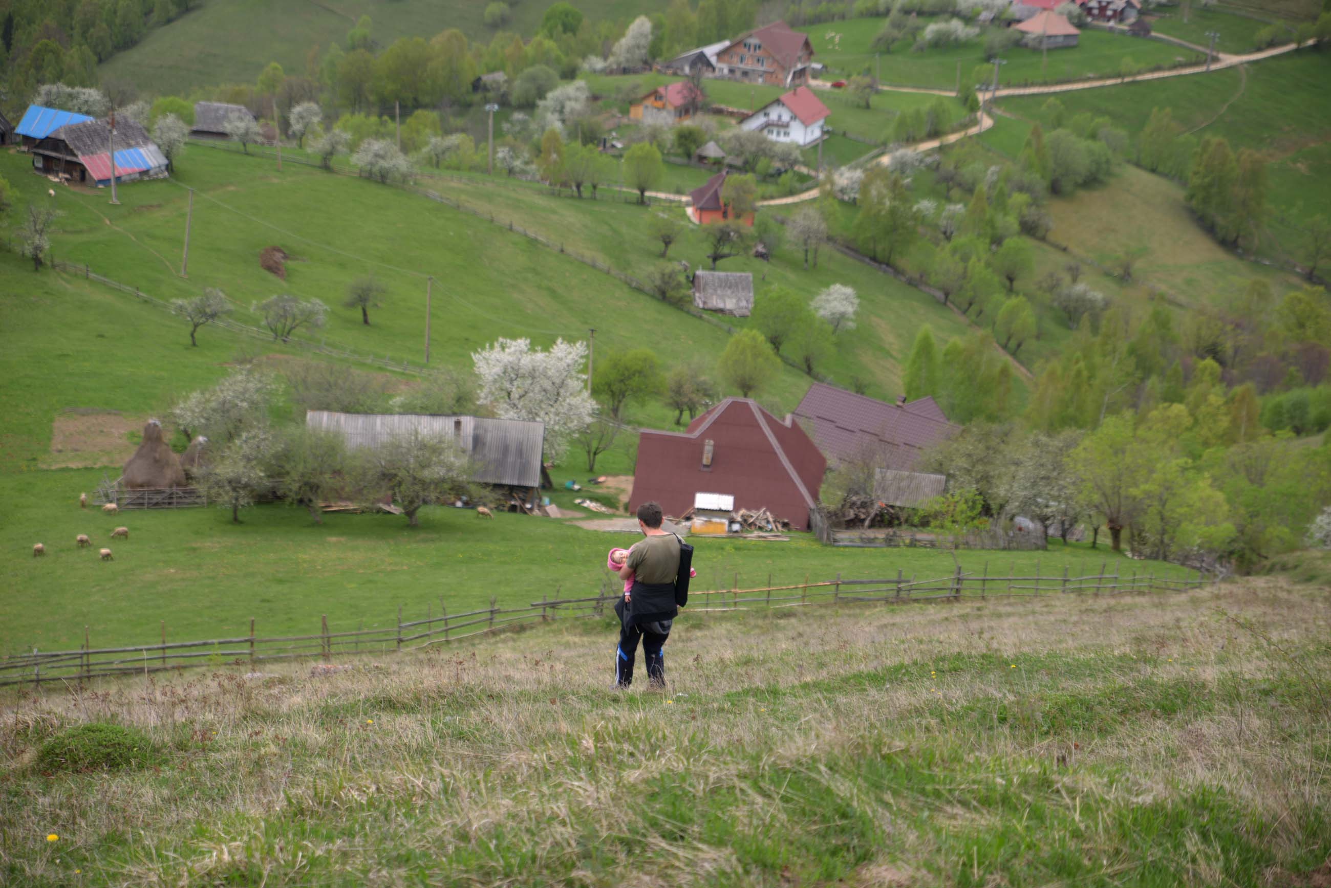 32_hiking_magura_piatra_craiului_carpathians
