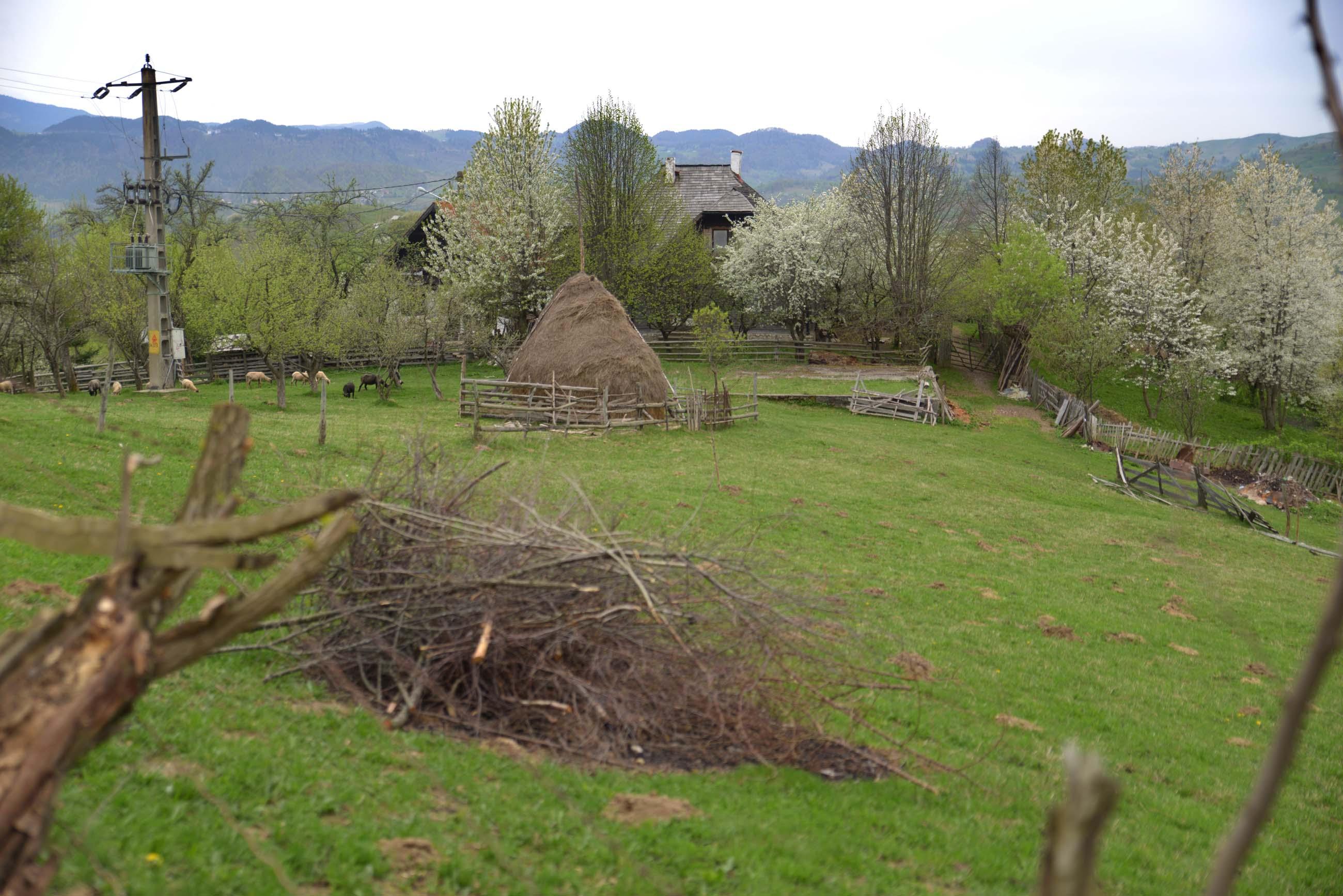 38_hiking_magura_piatra_craiului_carpathians