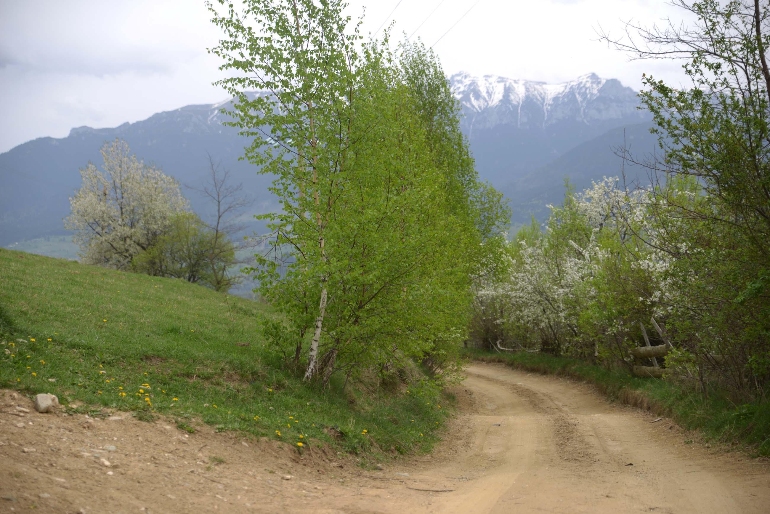 39_hiking_magura_piatra_craiului_carpathians