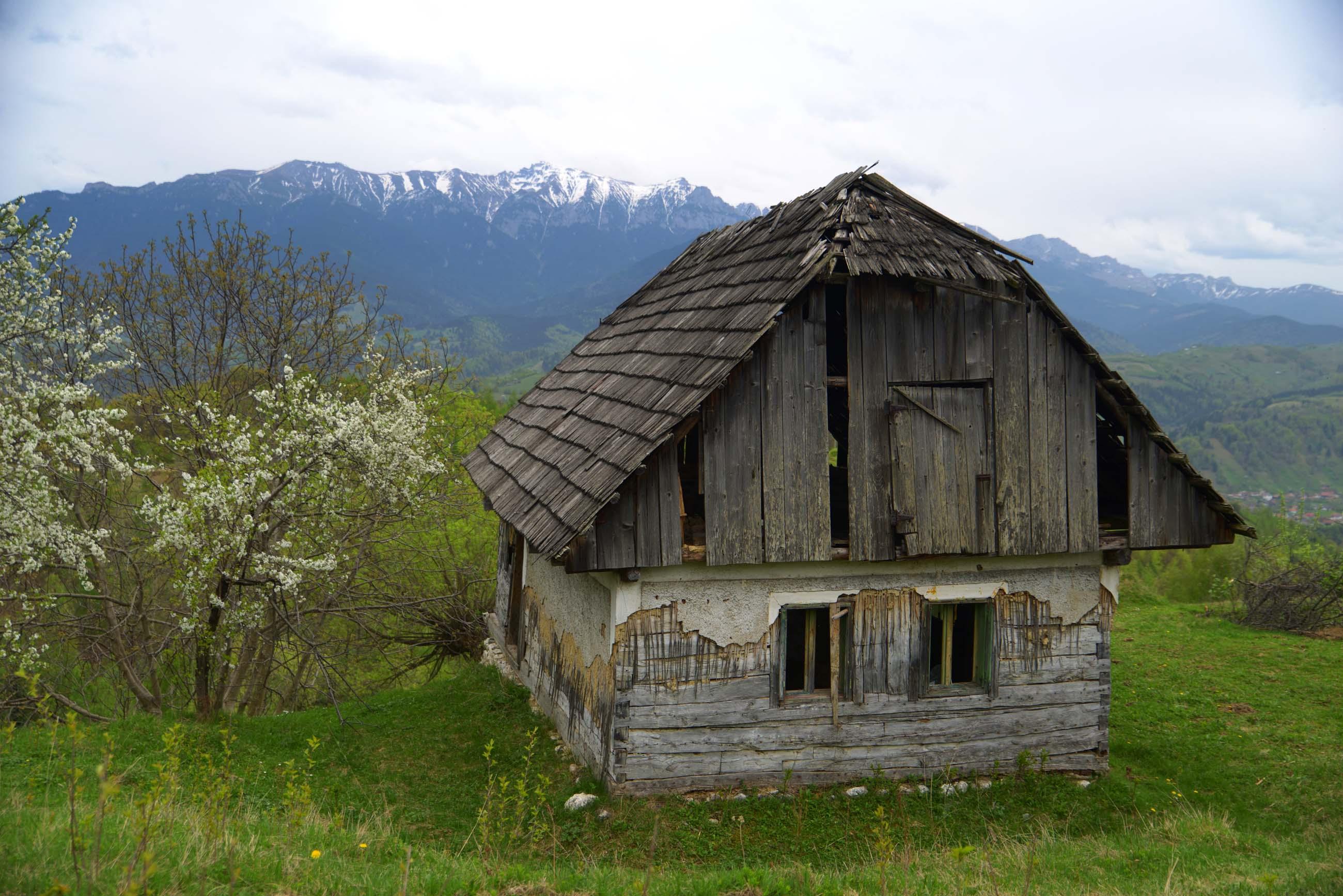 41_hiking_magura_piatra_craiului_carpathians