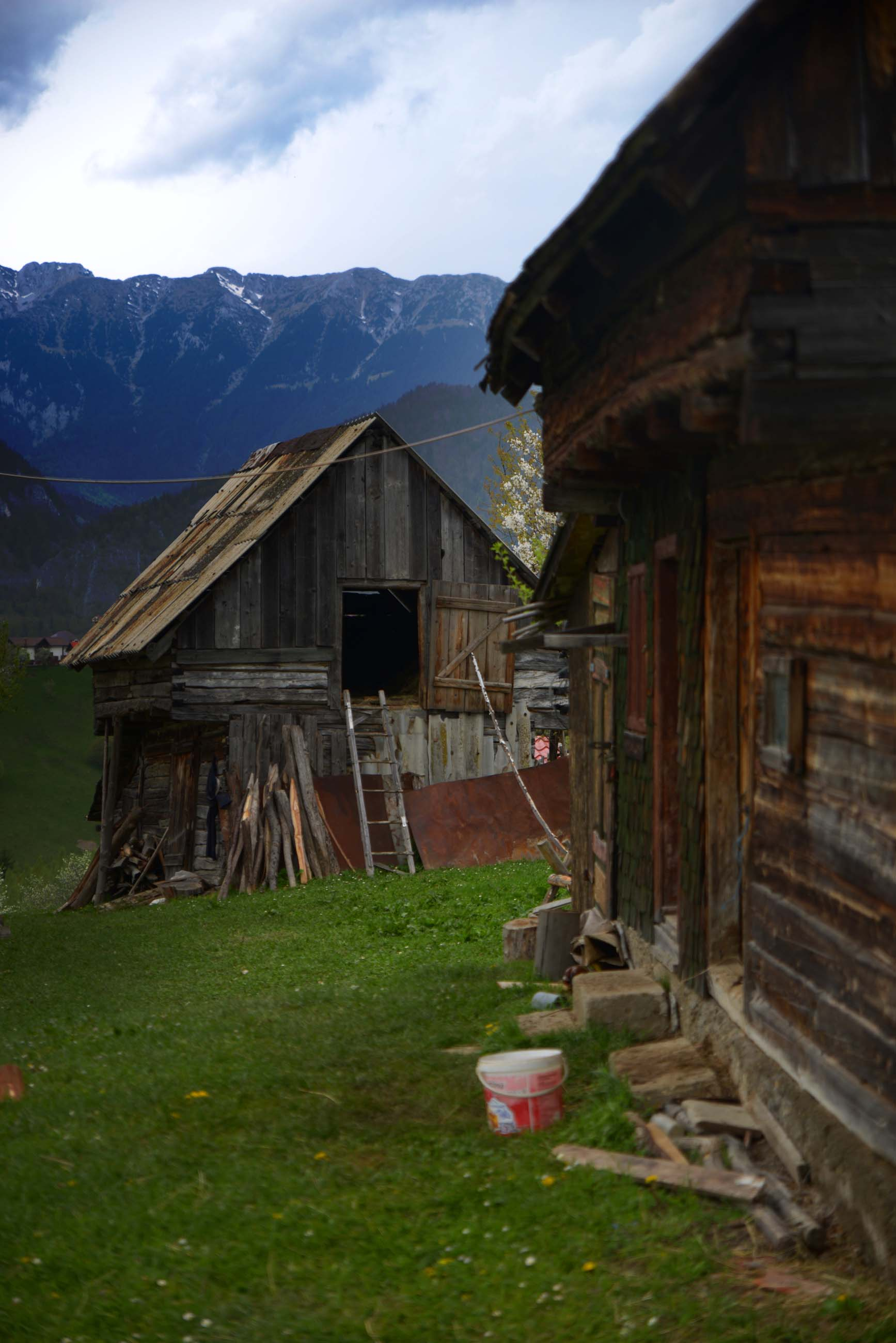 44_hiking_magura_piatra_craiului_carpathians