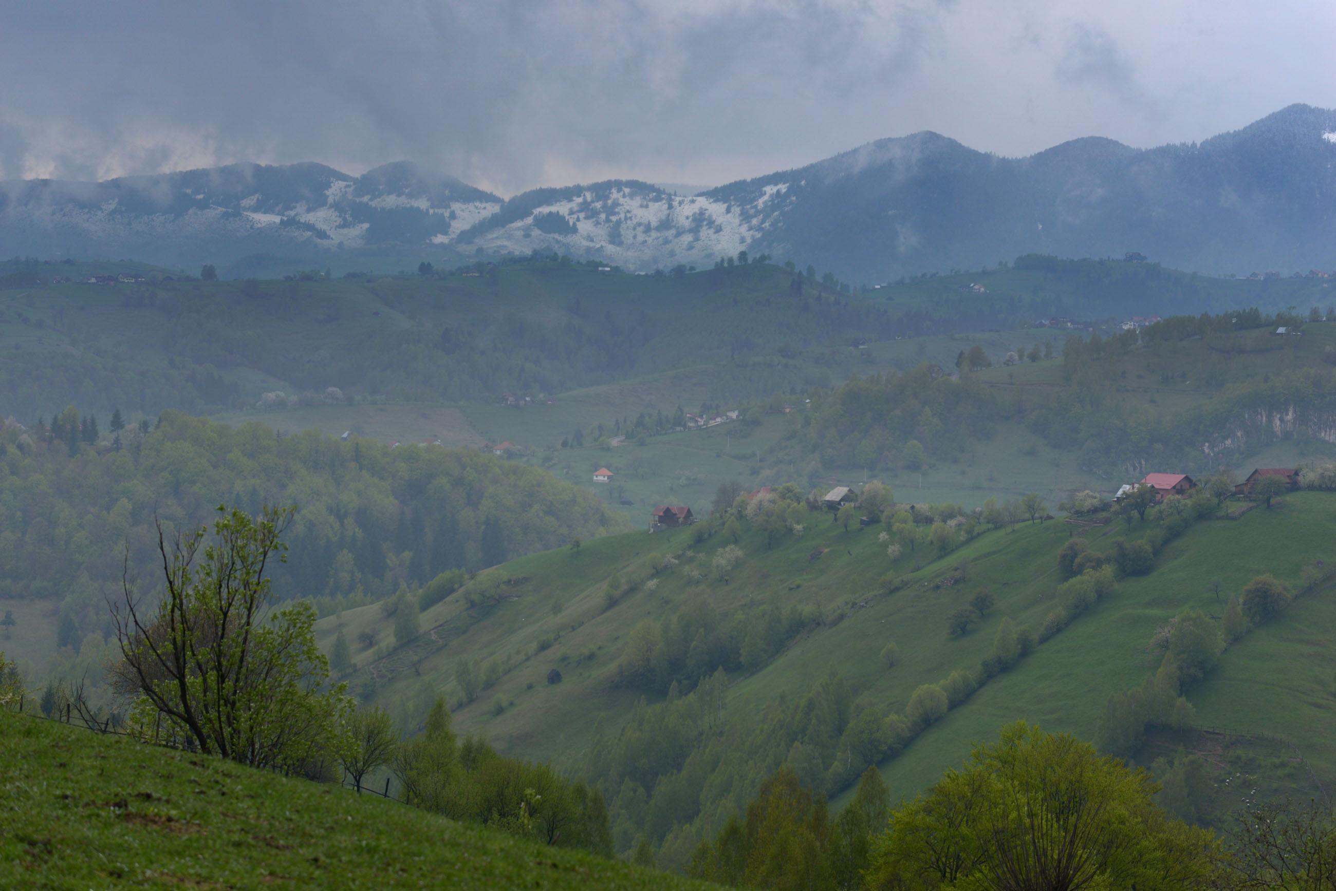 12_magura_carpathians