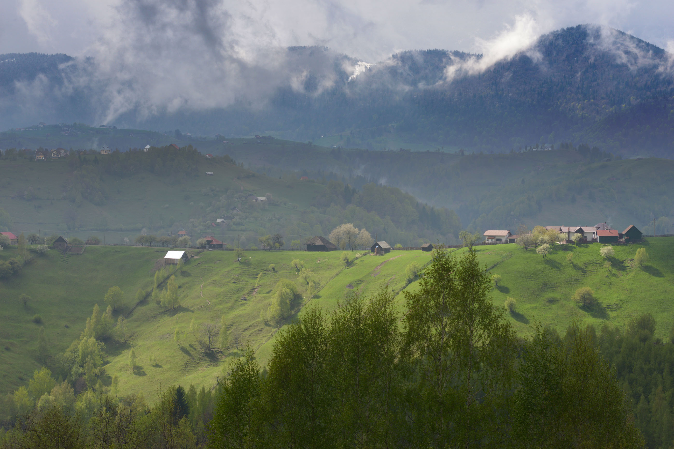 13_magura_carpathians