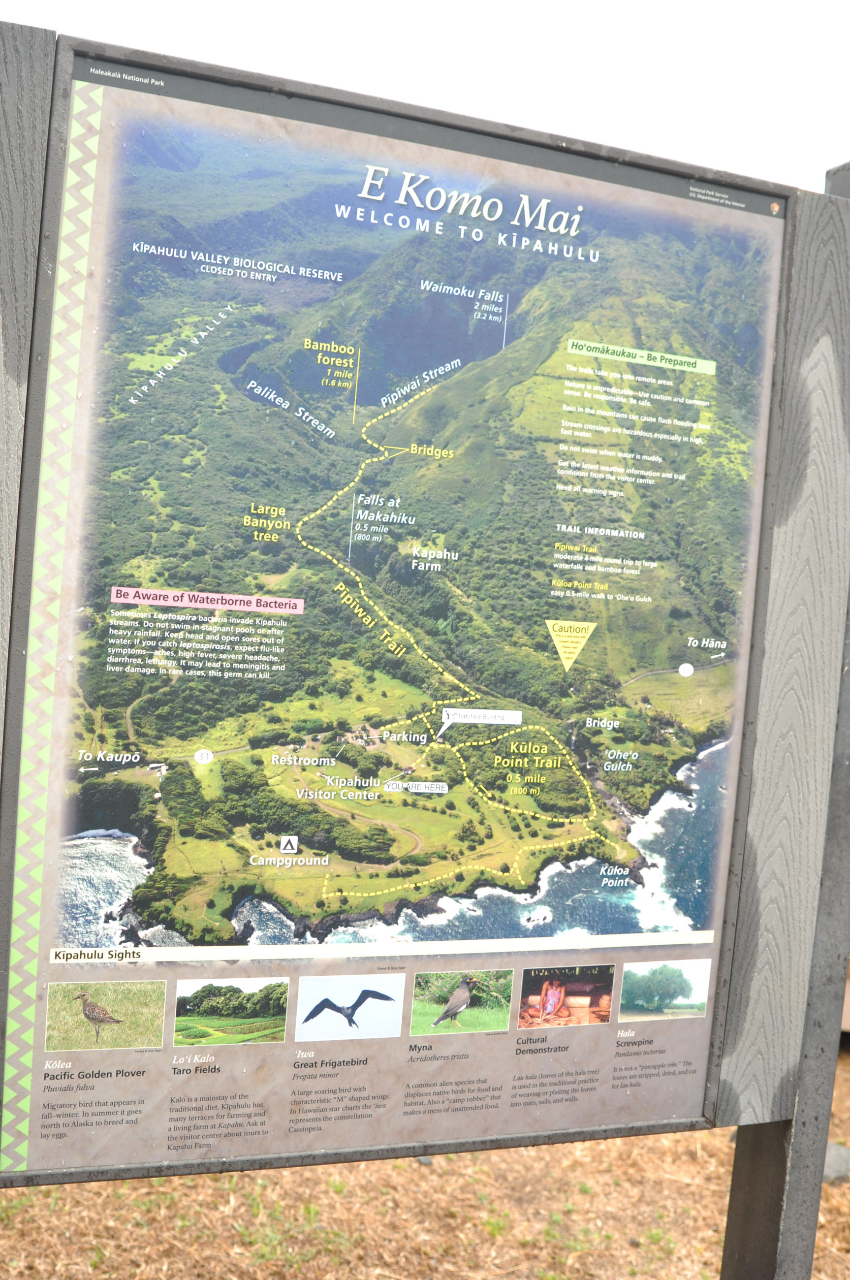 03_maui_hawaii_pipiway_trail